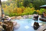 滝見苑ごりやくの湯