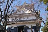 金華山山頂岐阜城に到着しました