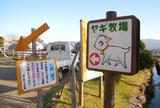 ビビッドタウン関ヶ原ヤギ牧場