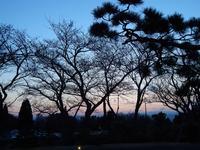 日本平ホテルの写真・動画_image_268776