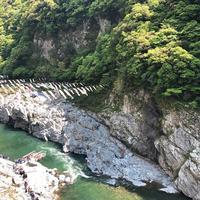 大歩危峡の写真・動画_image_639572