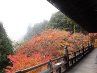 御嶽山 播州清水寺の写真・動画_image_102216