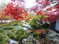 西明寺の写真・動画_image_102852