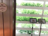 銀座・伊東屋の写真・動画_image_103247