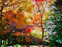 御嶽山 播州清水寺の写真・動画_image_104440