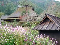 美山町観光協会の写真・動画_image_104460