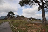 竹田城跡の写真・動画_image_105515