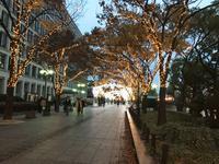 大阪市役所の写真・動画_image_106151