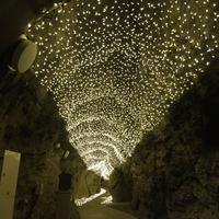 江の島岩屋の写真・動画_image_106360
