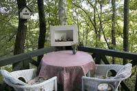 カフェ・ギャラリー緑の小箱の写真・動画_image_107067