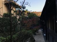 熱海 ふふ の写真・動画_image_107321