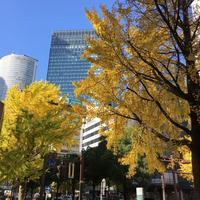名古屋駅の写真・動画_image_107652