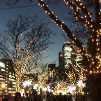 大阪市役所の写真・動画_image_107830