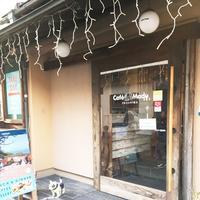 Cafe Madu ENOSHIMAの写真・動画_image_110486