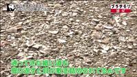 旧大塚家住宅の写真・動画_image_111390