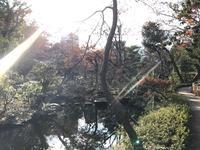 根津美術館の写真・動画_image_111643