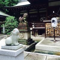 岡崎神社の写真・動画_image_111869