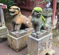 渋谷氷川神社の写真・動画_image_113180