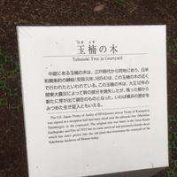 横浜開港資料館の写真・動画_image_113501