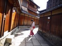 石塀小路の写真・動画_image_115238