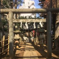 氷川神社の写真・動画_image_119185