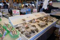 ピアBandai万代島鮮魚センターの写真・動画_image_120682
