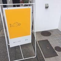 黄魚の写真・動画_image_121287