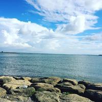 葛西臨海公園の写真・動画_image_121785