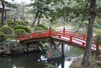 広島市の写真・動画_image_122128