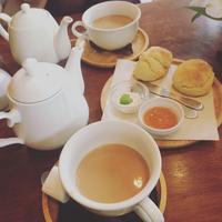 BOWLS cafeの写真・動画_image_123558