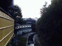 猿沢池の写真・動画_image_124204