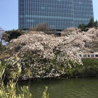 CANAL CAFE (カナルカフェ)の写真・動画_image_125771