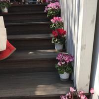 CANAL CAFE (カナルカフェ)の写真・動画_image_125774