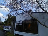 (株)山本園・WITH TEAの写真・動画_image_128163
