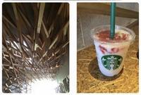 スターバックスコーヒー 太宰府天満宮表参道店(STARBUCKS COFFEE)の写真・動画_image_129228