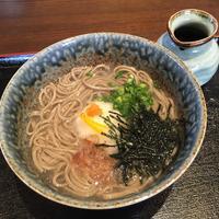 そば処 田中屋の写真・動画_image_129591