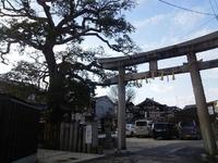 櫟谷七野神社の写真・動画_image_130167