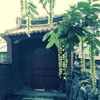 孔子廟・中国歴代博物館の写真・動画_image_134285