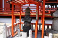 六波羅蜜寺の写真・動画_image_138109