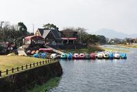 江津湖の写真・動画_image_139191