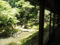 多賀大社の写真・動画_image_140423