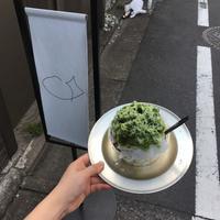 目黒ひいらぎの写真・動画_image_140499