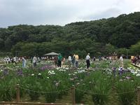 北山公園の写真・動画_image_141526