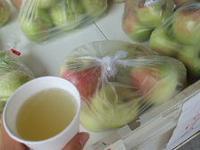 原観光りんご園の写真・動画_image_141924