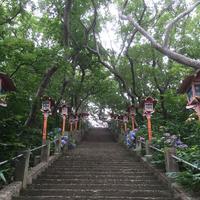 高山稲荷神社の写真・動画_image_145031