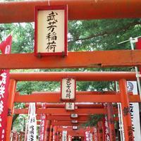 鬼子母神堂の写真・動画_image_145347