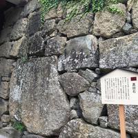上田城跡公園の写真・動画_image_146395