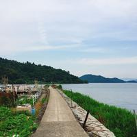 沖島の写真・動画_image_146465