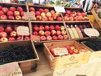Farmer's Marketの写真・動画_image_146953