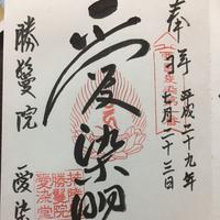 愛染堂勝鬘院(愛染さん)の写真・動画_image_147755